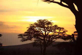 tramonti 3